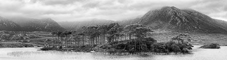 Connemara-Ireland-Lake-Mountains-Trees-panorama-black-and-white-fine-art.jpg