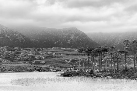 Connemara-Ireland-Lake-Mountains-Trees-panorama-black-and-white-fine-art_v1.jpg